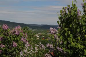 Utsikt over Lommedalen og Krydsbybakken